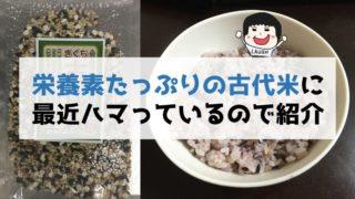 古代米(雑穀米)